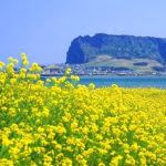 S. Korea Stops Visa-Free Entry To Jeju Island Due To Coronavirus