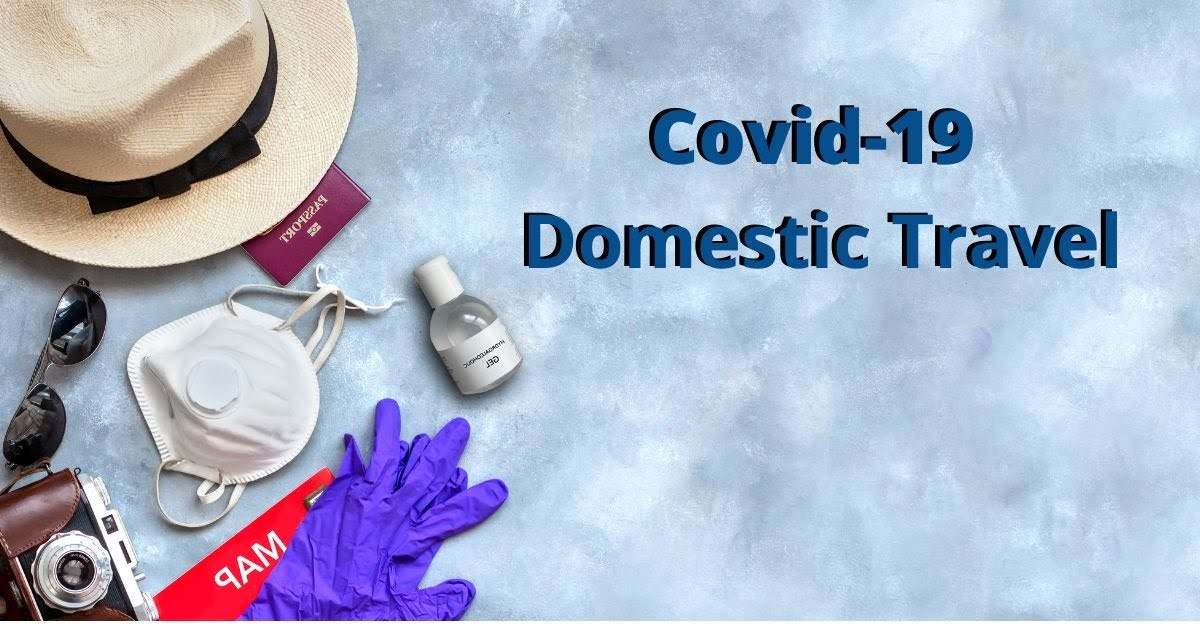 What You Need To Know About Domestic Travel In The Midst Of Covid-19